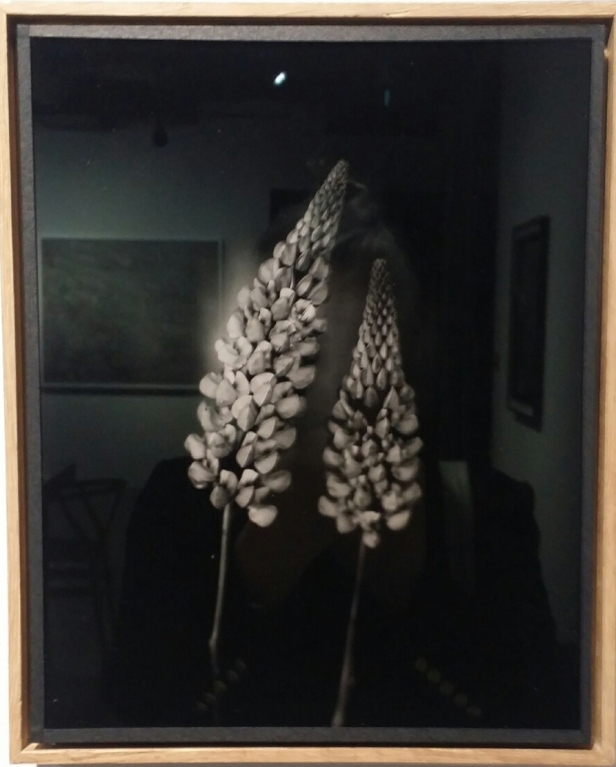 Éric Antoine, 2015, Ambrotypi. Foto: fra utstillingen. Siri Wolland