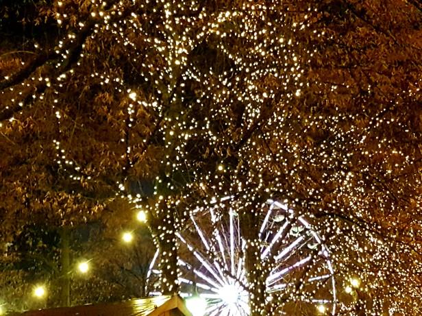 Stjernelys i trærne på Karl Johan. Foto: Siri Wolland