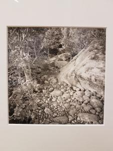 Dag Alveng, Sti, Hvasser, 2012. Foto fra utstillingen: Siri Wolland