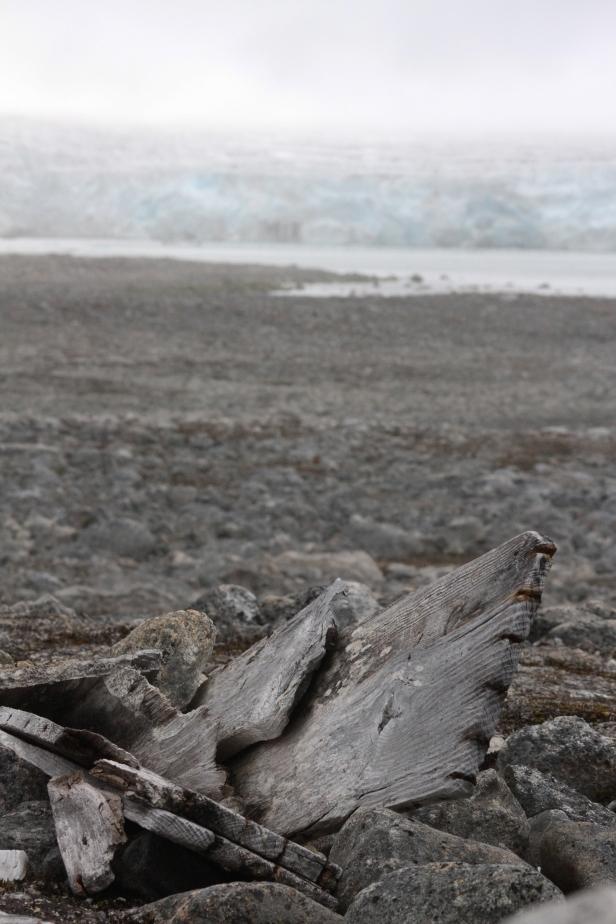 En av til sammen 230 hvalfangergraver på Likneset på Svalbard. Foto: Siri Wolland, Riksantikvaren