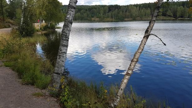 Ved Sognsvann. Foto: Siri Wolland.