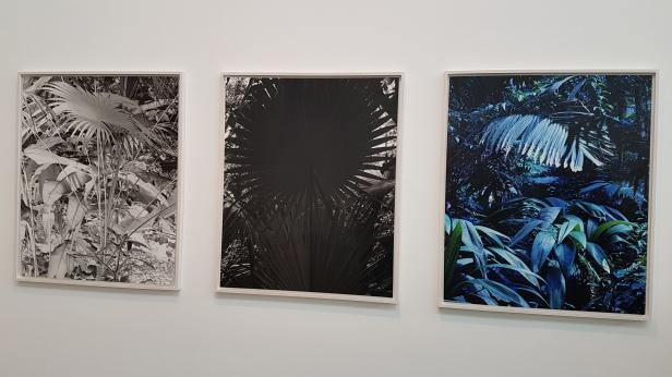 Ulla Schildt (1971), Garden in Colors I,II,III, 2017/18. Foto fra Høstutstillingen 2018; Siri Wolland.