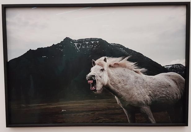 Fotograf Tommy Ellingsens serie Drive, 2015-2017. Foto fra utstillingen; Siri Wolland.
